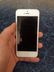 iPhone 5 16gB - White Белый